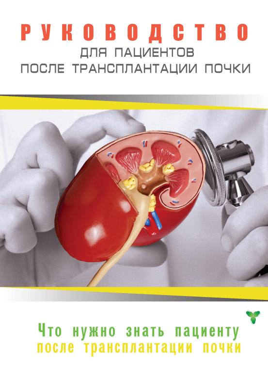 Руководство для пациентов после трансплантации почки