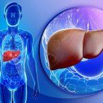трансплантация печени от живого донора
