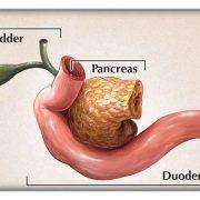 Панкреатодуоденальная