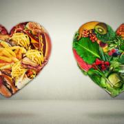 Топ 10 продуктов для ускорения метаболизма
