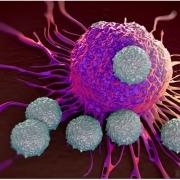 Новая клеточная иммунотерапия при злокачественных опухолях
