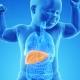 Результаты трансплантации печени у детей значительно улучшились